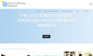 david-manley-awards