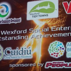 Wexford Social Enterprise Outstanding Achievement Award